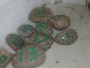 Pebbles numbered