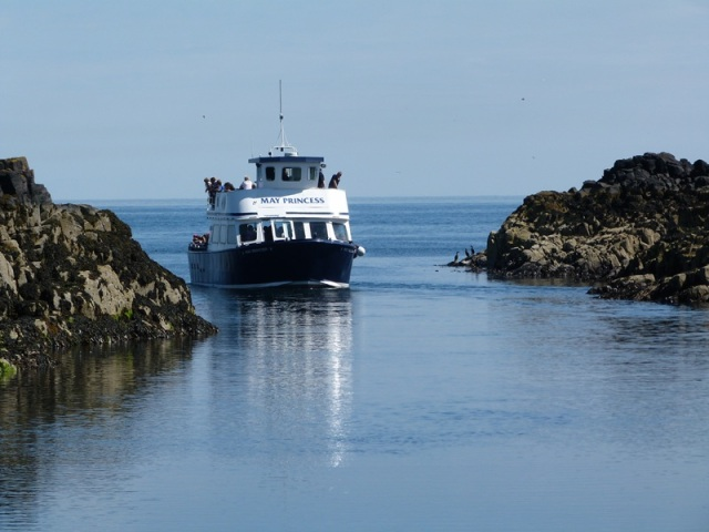May Princess bringing visitors to the island - are you booked for a visit?