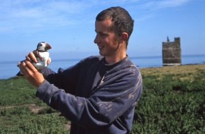 David steel started working on islands and with Puffins from 2001