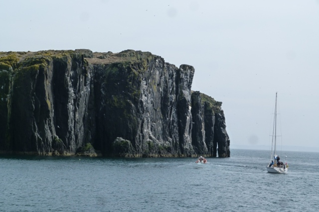 The impressive west cliffs of the Isle of May