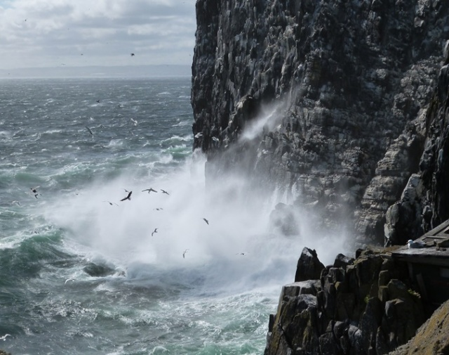 High winds and heavy seas smash into the west cliffs of the Isle of May