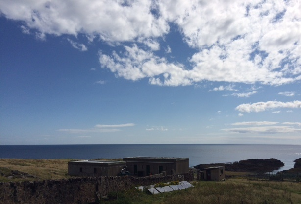 Blue skies and flat sea, a perfect morning for a seawatch!