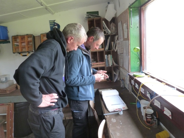 As the Bird Obs carried out valuable bird ringing on a daily basis